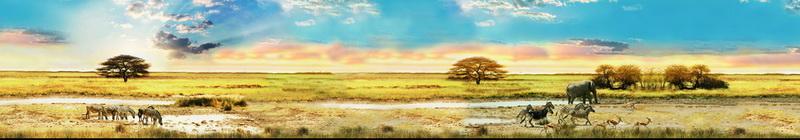 панорама_0146