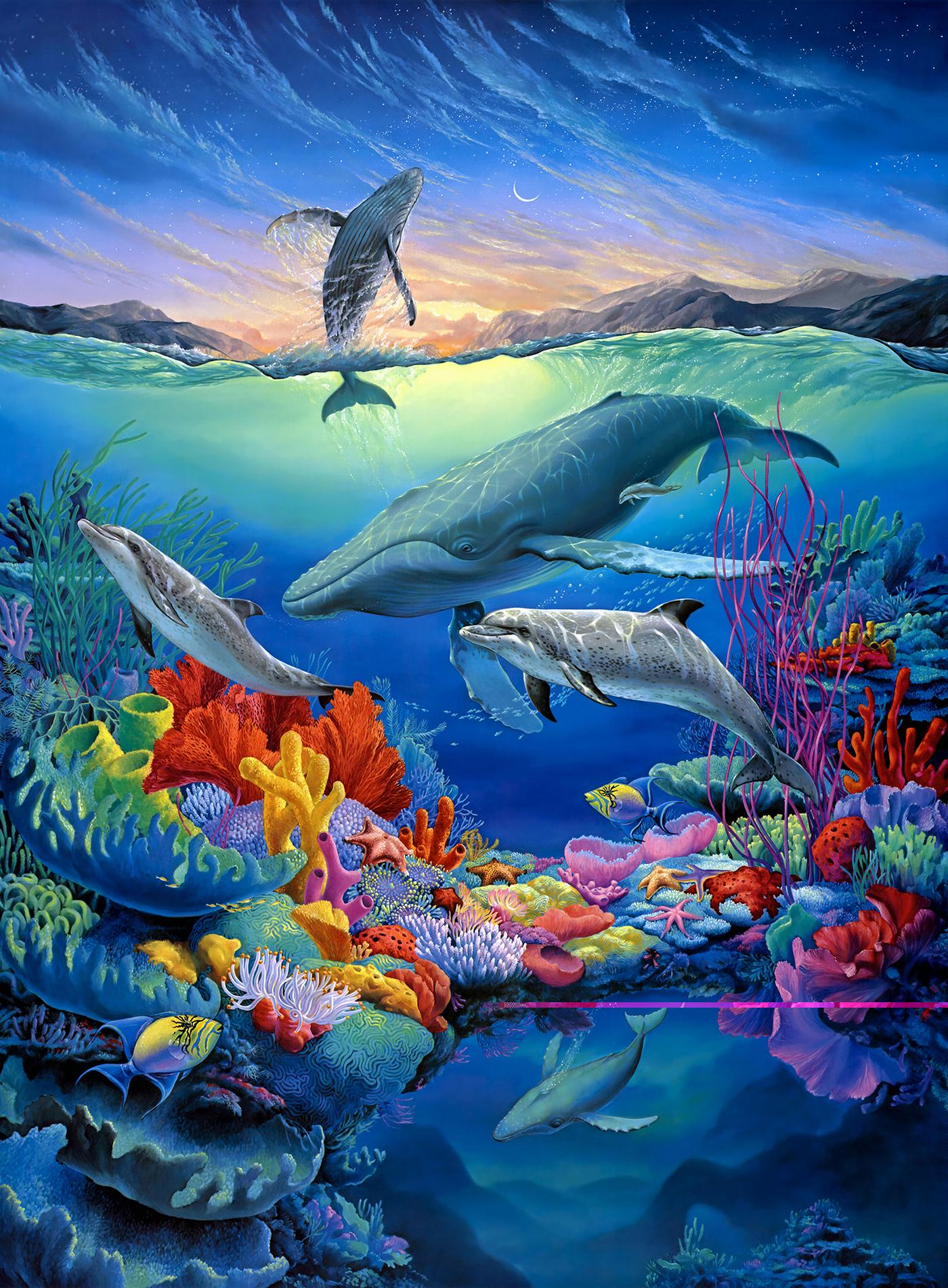 3 Море с дельфинами